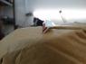 Уплотнительная резинка для установки элементов обвеса